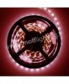 Lampe Oflight GU10 6W 30°